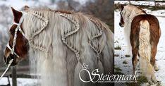 Mal was kreativeres- eine Flechtfrisur für Pferde mit sehr dichter Mähne oder Schweif