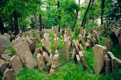 Picture of Old Jewish cemetery in Prague, Czech Republic one of the oldest cemeteries in the world