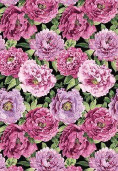 Beautiful Blossoms - Passion By Deborah Edwards Northcott Studio
