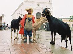 Galería - Fotos de Guatemala por Avelino Osorious | Solo lo mejor de Guatemala