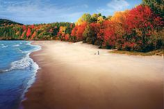 Visit These Michigan State Parks to See Breathtaking Fall Colors Fall In Michigan, Michigan Travel, State Of Michigan, Lake Michigan, Ironwood Michigan, Wisconsin, State Parks, Oh The Places You'll Go, Places To Visit