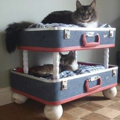 kbw_upcycle_4 #HGTV Katie Brown #upcycle for cat beds- could do this for the puppies. Nice.