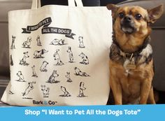 30 Gifts For People Who Would Rather Spend Time With Dogs Than With Humans