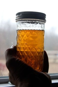 Homestead Honey | Beyond Maple Syrup: Tapping Black Walnut Trees | http://homestead-honey.com