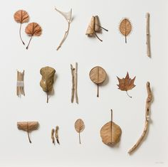 To truly appreciate the delicacy of Susanna Bauer's leaf sculptures, think of crunching a dead leaf in your hand, how it disentigrates into dust with the slightest effort. To work with dry and fragile leaves as a medium for crochet seems nearly impossible, but Baur somehow manages it with ease, turn