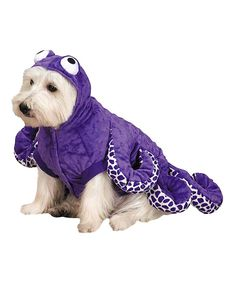 Take a look at this Purple Octopus Pet Costume on zulily today!
