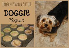 Skinny Jeans: Frozen Peanut Butter Doggie Yogurt