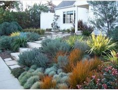 English Garden, California Style - Front yard - traditional - landscape - los an. - in the garden - English Garden, California Style – Front yard – traditional – landscape – los angeles – b - Modern Landscape Design, Traditional Landscape, Landscape Plans, Modern Landscaping, Backyard Landscaping, California Front Yard Landscaping Ideas, Backyard Plants, Traditional Homes, Desert Landscape