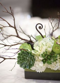 lovely living centerpiece - eco-friendly and lasting with succulents