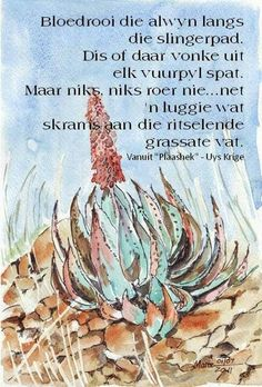 🌿 Tuinmaak in Suid Afrika: Bloedrooi die aalwyn in winter All Quotes, Best Quotes, Qoutes, Afrikaans Language, Afrikaanse Quotes, Goeie More, Winter Quotes, Wise Words, Favorite Quotes