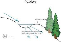 Image result for swales