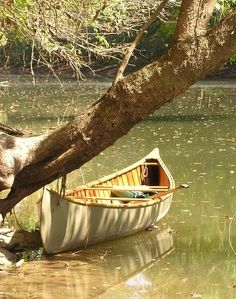 Multi-Day Kayak Camping and Packing Your Gear the Right Way - Way Outdoors Wooden Canoe For Sale, Wood Canoe, Canoe Boat, Canoe Camping, Paddle Boat, Canoe Trip, Canoe And Kayak, Boat Dock, Jon Boat