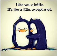 I like you a lottle. Awe I love my family a lottle Arabic Love Quotes, Inspirational Quotes About Love, Inspirational Artwork, The Words, Quotes Distance Friendship, Cute Quotes, Funny Quotes, Cute Little Quotes, Girly Quotes