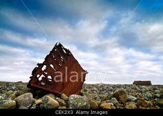 Shipwreck at Hårr.