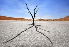 Silhouetted against the sun, Deadvlei-Namibia by Patrick Galibert on 500px