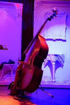 Double Bass, Contrabajo, Contrabass,  Counterbass, Bass fiddle