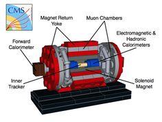 LEGO Ideas - The Large Hadron Collider