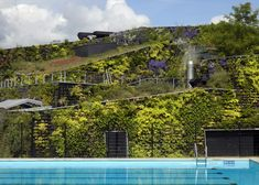 This leisure centre in Amsterdam by Dutch architects VenhoevenCS was designed as a fortress covered in plants
