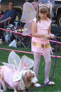 So cute, d'awww. Basset Fairy can visit me anytime!