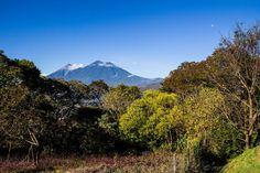 https://flic.kr/p/Ppiwsu | Volcanes de Fuego y Acatenango, desde el Tenedor del Cerro | © All rights reserved