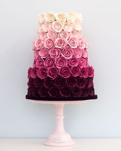 Pink Ombre Roses Cake