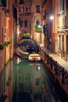 "renamonkalou: "" Venice   İlhan Eroglu """