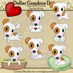 Spot - Jack Russell Terrier - $1.00 : Dollar Graphics Depot, Quality Graphics ~ Discount Prices