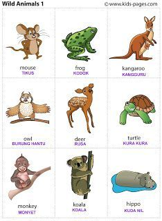 dieren - Wild animals printable for poster or game cards Learning English For Kids, Kids English, English Language Learning, English Lessons, English Words, Teaching English, Learn English, Kids Learning, Animal Pictures For Kids