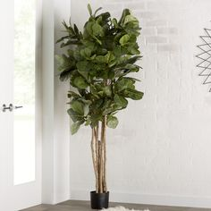Brayden Studio® Fiddle Leaf Fig Tree in Pot