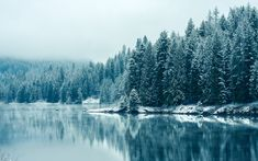 lake in winter - Google Search