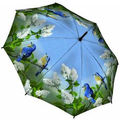Galleria Hautman Bluebirds Umbrella - available in Long Stick or Folding styles from www.hellobrolly.co.uk