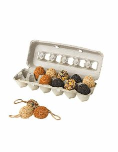 "Birdseed Eggs - Birdseed Eggs are a clever and useful gift for bird lovers   • Packed in a fun ""gift box"" egg carton   • Eggs are solid seed with built-in jute hanger"