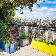 Die Balkon-Gärtner dürfen sich freuen - Der Balcong ist da! Der Balcong ist das Pflanztaschen-Beet von Bacsac für den Balkon, die Terasse oder einfach den Bürgersteig. Robuste und sorgfältige Verarbeitung, Wetterbeständigkeit und pfiffiges Design.  #Bacsac #urbankraut  #urbangardening #urbangarden#berlinstyle #berlin #Design #ichliebeberlin #urbanberlin #gardening #pflanzbehälter #cityfarming #citygardening #pflanzsack #balkonien #balkon #garten #grün #gardening #blumentopf #pflanztopf…