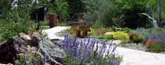Summer is a perfect time to visit the Betty Ford Alpine Gardens in Vail, Colorado.  The Garden at 8,250 feet above sea level, is the highest botanical garden in the US, and perhaps the world.