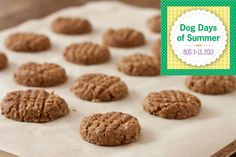 Dog Days of Summer Peanut Butter Dog Biscuits by Recipe Renovator