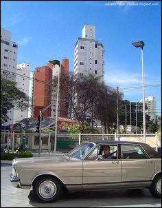 Campo Belo. Sao Paulo , Brazil. Photo: Adriana Paiva.