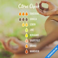 Citrus fruits are very popular during the summer since they are common choices for preparing cold refreshments such as citrus juices. Neroli Essential Oil, Neroli Oil, Vanilla Essential Oil, Essential Oil Diffuser Blends, Orange Essential Oil, Doterra Diffuser, Essential Oils, Grapefruit Plant, Health Application