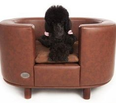 What pooch would not love this Chester & Wells Hampton #Dog Bed - now on Sale