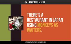 100 Facts about Strange Things ←FACTSlides→ There's a restaurant in Japan using monkeys as waiters.