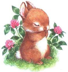 http://www.silvitablanco.com.ar/bunny/conejos-1.htm