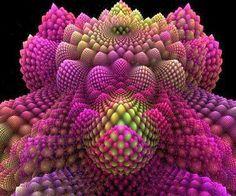 Romanesco broccoli seen as a fractal
