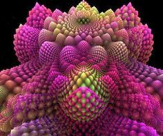 Romanesco broccoli seen as a fractal
