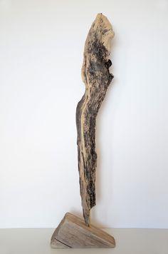 Treibholz-Skulptur IMPULSE ~ driftwood sculpture