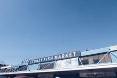 : Fish Market, Sydney, AUS Sydney trip 2016