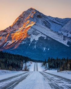 Alpenglow at dawn on a bitterly cold morning (Kootenay Plains Park, Alberta) by Mark Jinks (@markjinksphoto) on Instagram cr.c.