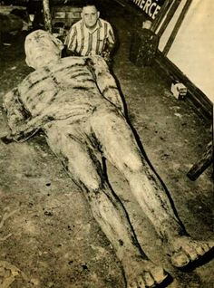 Probably IS related to the Cardiff Giant -- also plaster. 11 foot giant human skeleton unearthed in Nevada. In Saint Paul Globe, January 1904 bones of a human skeleton 11 feet high are dug up in Nevada may be related to Cardiff Giant. Ancient Aliens, Ancient History, Ufo, Giant Skeletons Found, Human Giant, Nephilim Giants, Nephilim Bones, Giant People, Tall People