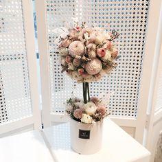 . Lesson Order Katalk ID vaness52 E-mail vanessflower@naver.com . #vanessflower #vaness #flower #florist #flowershop #handtied #flowergram #flowerlesson #flowerclass #바네스 #플라워 #바네스플라워 #플라워카페 #플로리스트 #꽃다발 #부케 #원데이클래스 #플로리스트학원 #화훼장식기능사 #플라워레슨 #플라워아카데미 #꽃수업 #꽃주문 #부케 #花 #花艺师 #花卉研究者 #花店 #花艺 . . #토피어리 #topiary . . Lovely