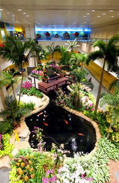 Orchid Gardens @ Singapore Changi Airport - best airports in Asia