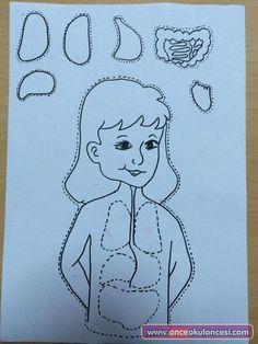 Vücudumuz ve Organlarımız Kalıplı - Önce Okul Öncesi Ekibi Forum Sitesi - Biz Bu İşi Biliyoruz