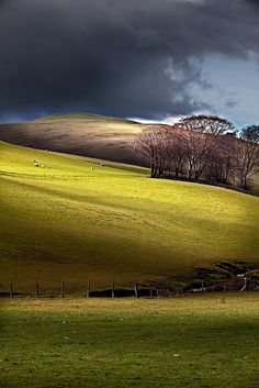 The Rolling Hills of Broughton, Scotland by Stuart Low